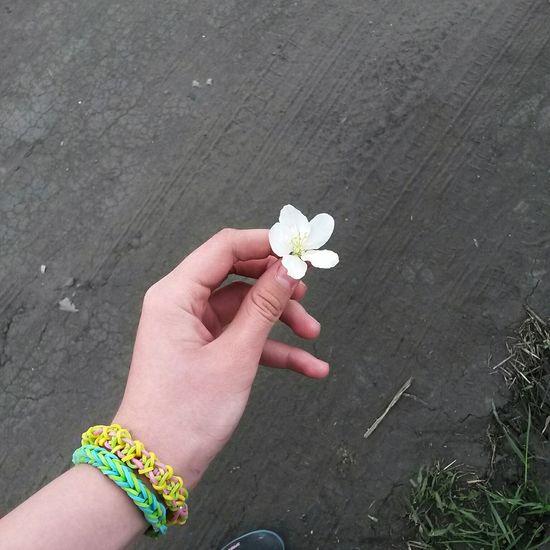Няяяя 🌸🌸🌸 Flower Keeper Details Of My Life Keep  Summer Forest Smile Sun лето Imagine