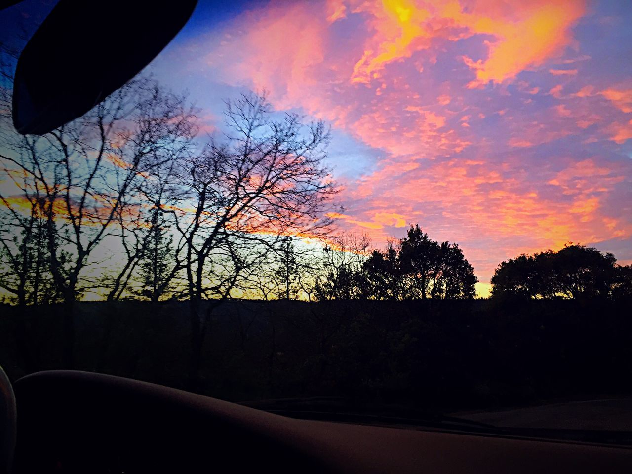 tree, sunset, silhouette, nature, sky, beauty in nature, road, car, no people, transportation, tranquil scene, scenics, bare tree, tranquility, outdoors, day