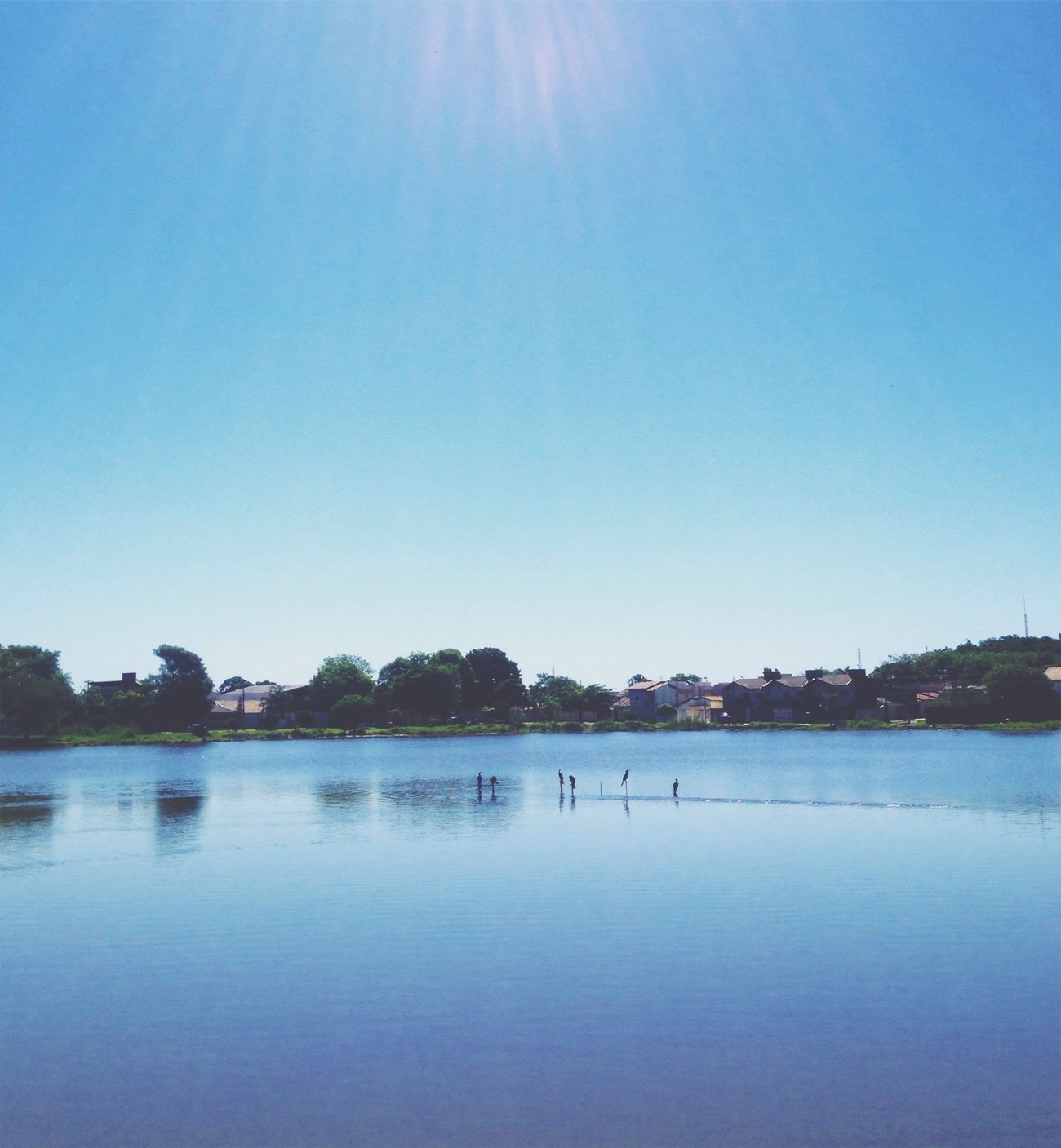 Lake Water Clear Sky Blue Nature Beauty In Nature Tranquility Outdoors Day No People Sky Tree Landscape