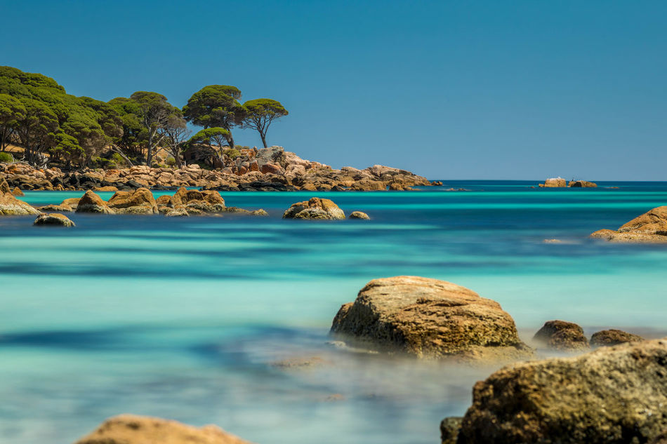 Bunker bay.. my words will never do it justice 5dmkiv Beach Beauty In Nature Canon5DMkIV Canonphotography Clear Sky Day Horizon Over Water Idyllic Nature No People Outdoors Rock - Object Scenics Sea Sky Tranquil Scene Tranquility Turquoise Turquoise Water Water Western Australia