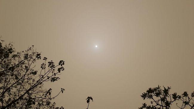 Seasonscollection Season  Harmattan Sunrise_sunsets_aroundworld Dust Dust Subsahara Africa Day To Day No Edit