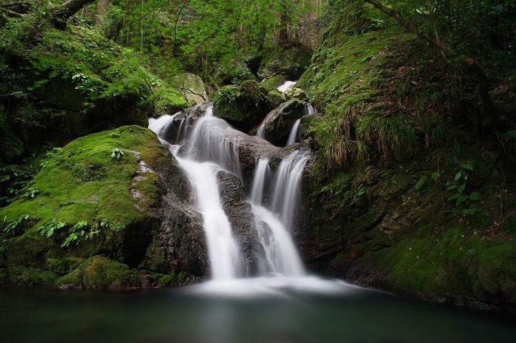 Waterfall EyeEm Nature Lover 徳島県 Long Exposure