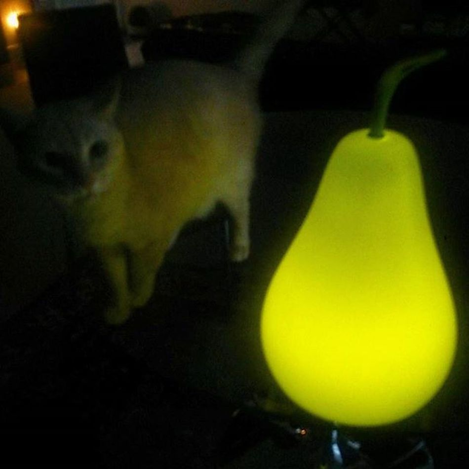 Greeted by the IKEA Pear Nightlight and the Warm Fuzzy Glow of Creamio 's Mews ...