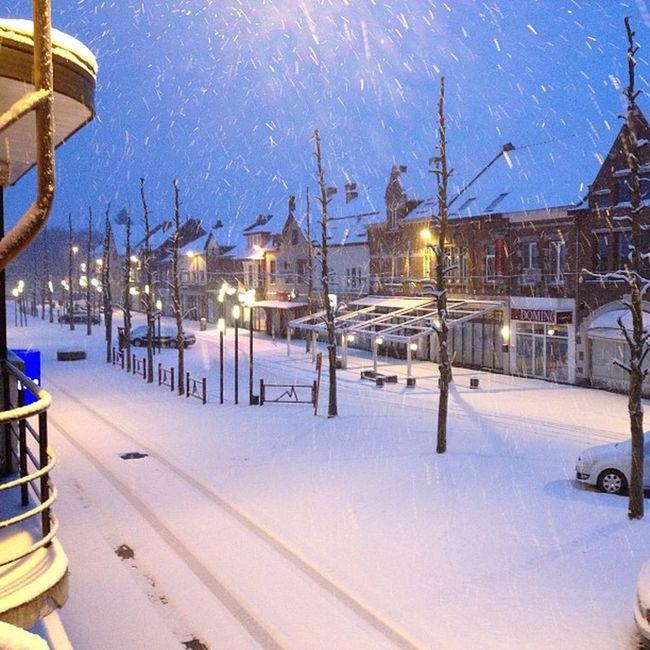 Winter and Snow in Eisden Eisdentuinwijk Maasmechelen Winterwonderland Eisdencity