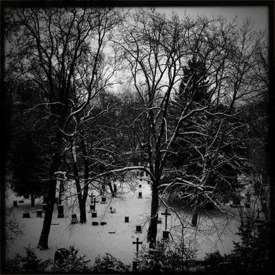 hipstamatic at Hoppenlau Friedhof by Dennis F.