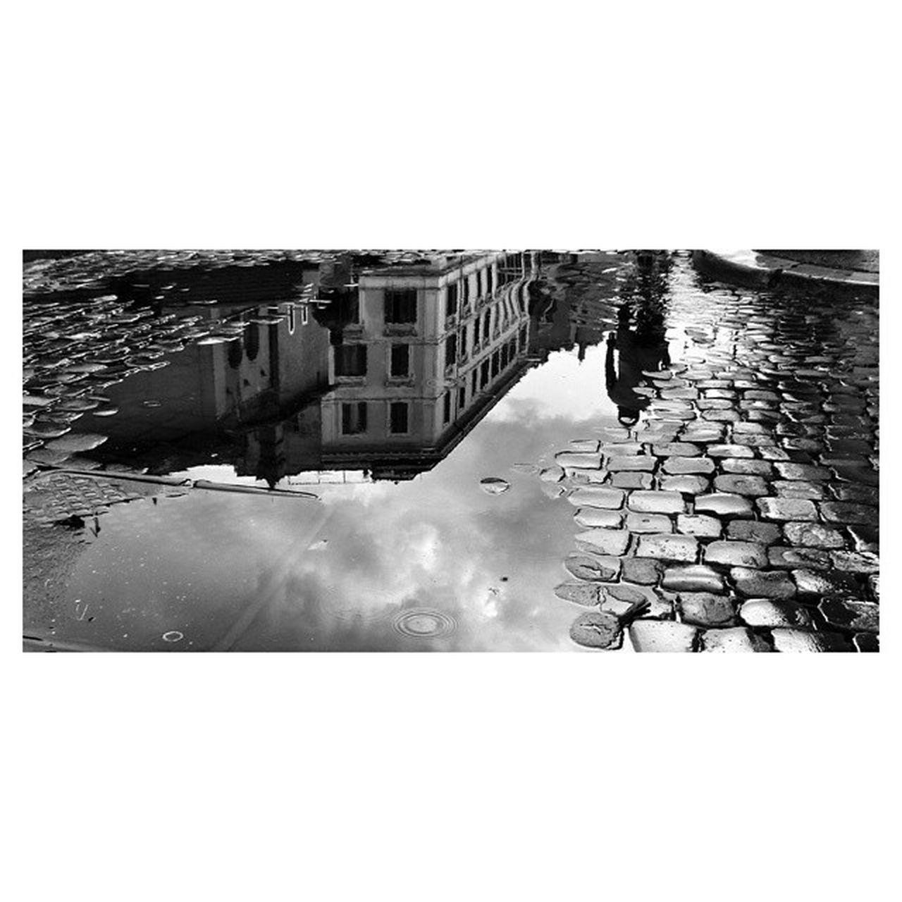 Shades Of Grey Rome Roma