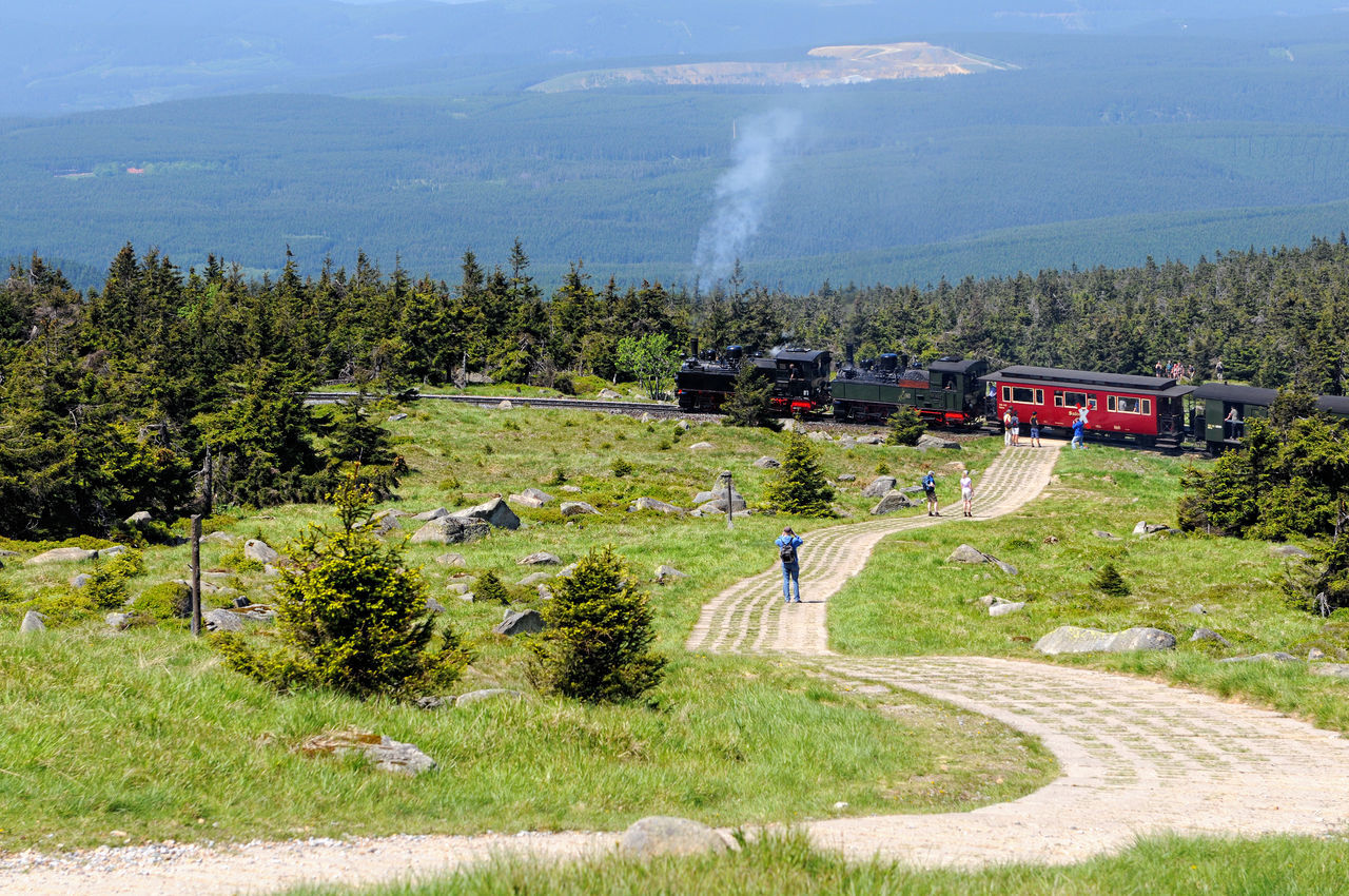 historical locomotive is going up high to Brocken Peak with tourists. Brocken is part of Harz National Park. Brocken Brockenbahn Day Grass Green Green Color Harz Idyllic Landscape Mountain Mountain Range Nature Non-urban Scene Outdoors People Railroad Rural Scene Saxonyanhalt Scenics Train Tranquil Scene Tranquility Travel Destinations Tree