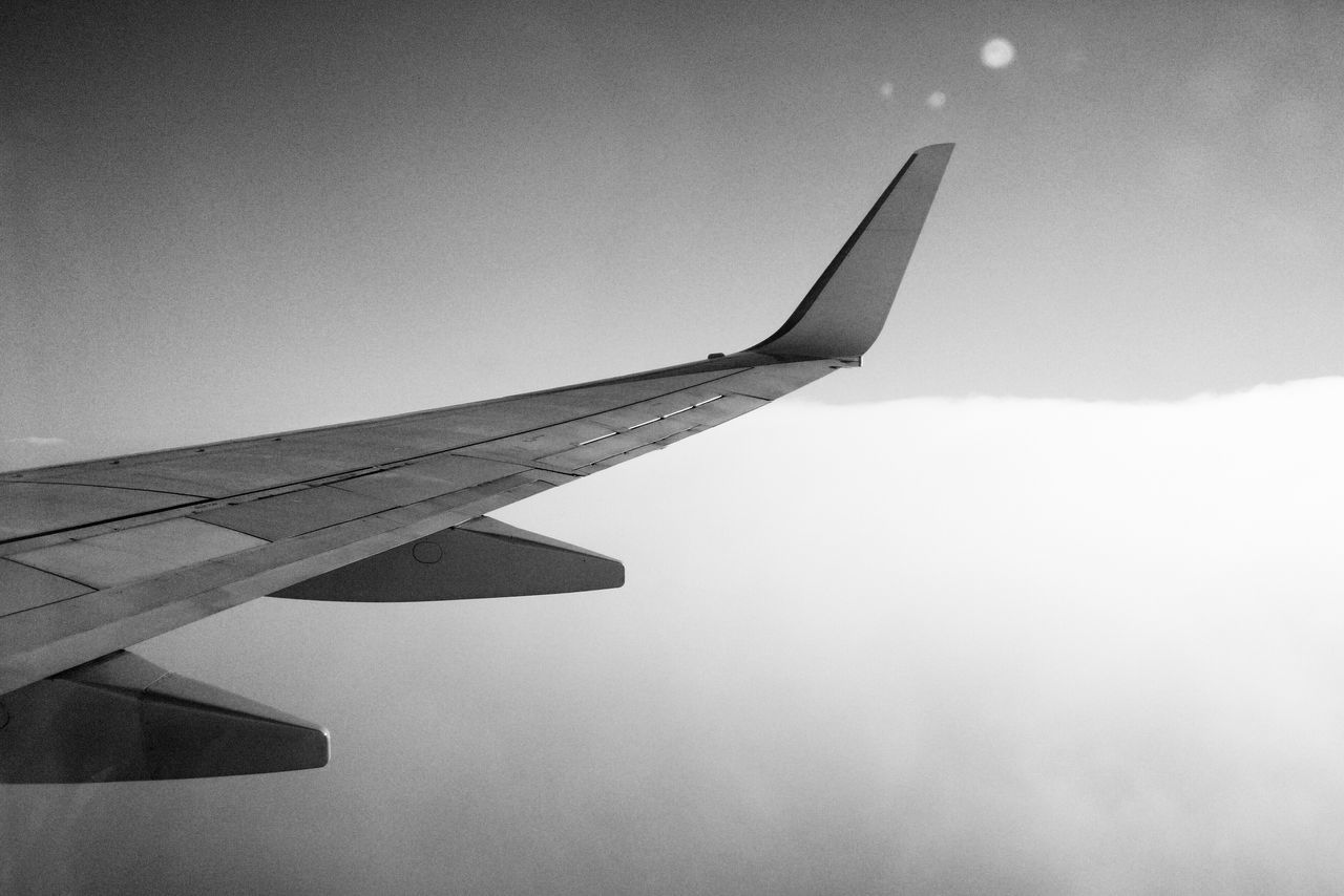 Flight Sky Skyporn Sky And Clouds Airplane AirPlane ✈ Wing Blackandwhite Flying Flying High Black And White Black & White Monochrome
