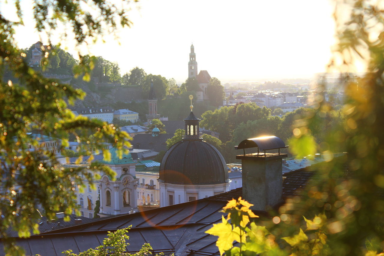 Architecture Austria Building Exterior Built Structure Cathedral Church City Clear Sky Day Dome Historical Historical Building Nature No People Outdoors Religion Roof Rooftop Rooftops Salzburg Salzburg, Austria Sunny Tree Tree Trees