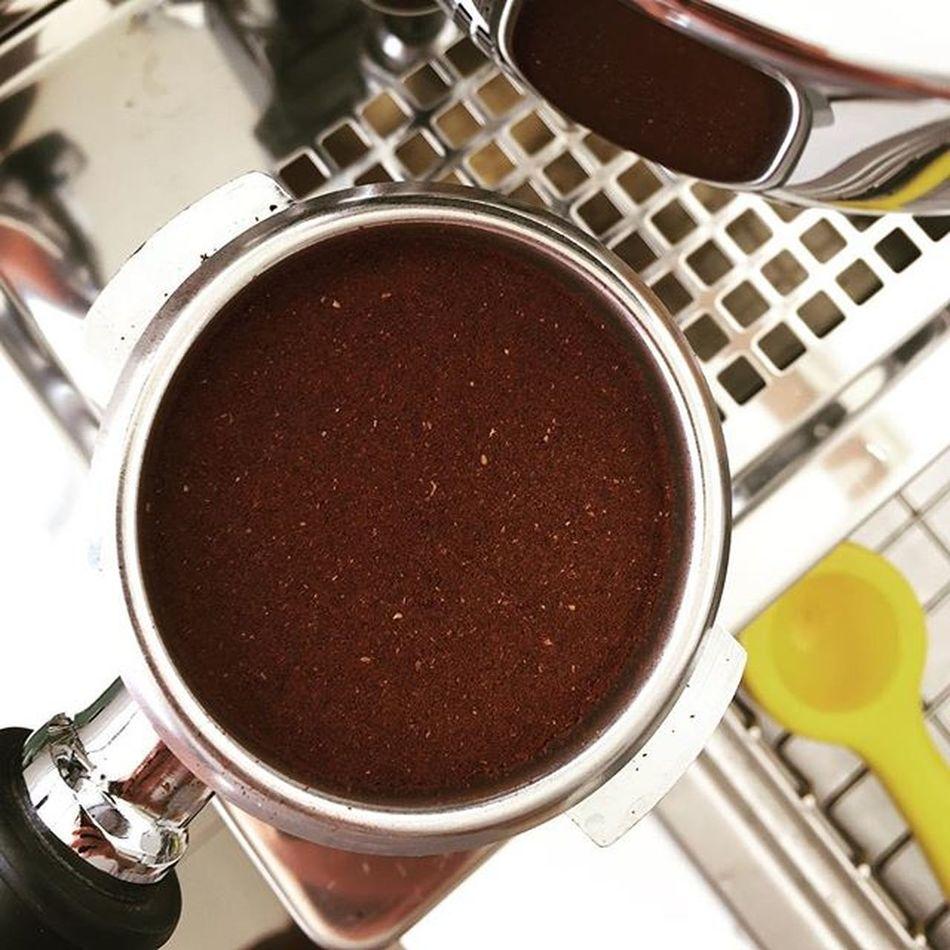 Wholelattelove Coffeegeek Cuppuccino Bluebottlecoffee