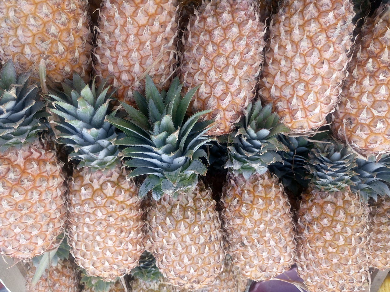 fruit, food and drink, pineapple, food, market, freshness, retail, healthy eating, no people, close-up, day, outdoors, supermarket