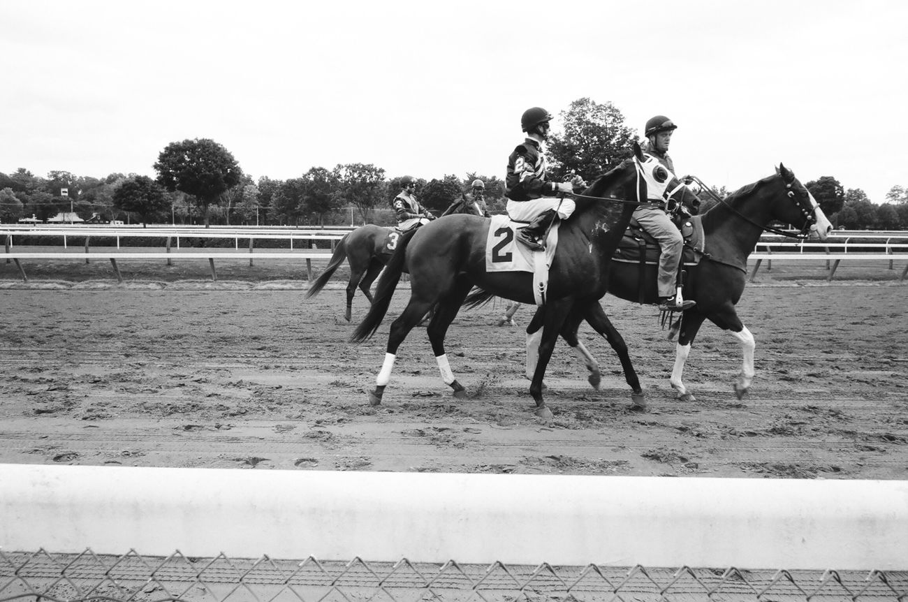 At the race track in Saratoga Springs . Film Photography Leica Ilforddelta400