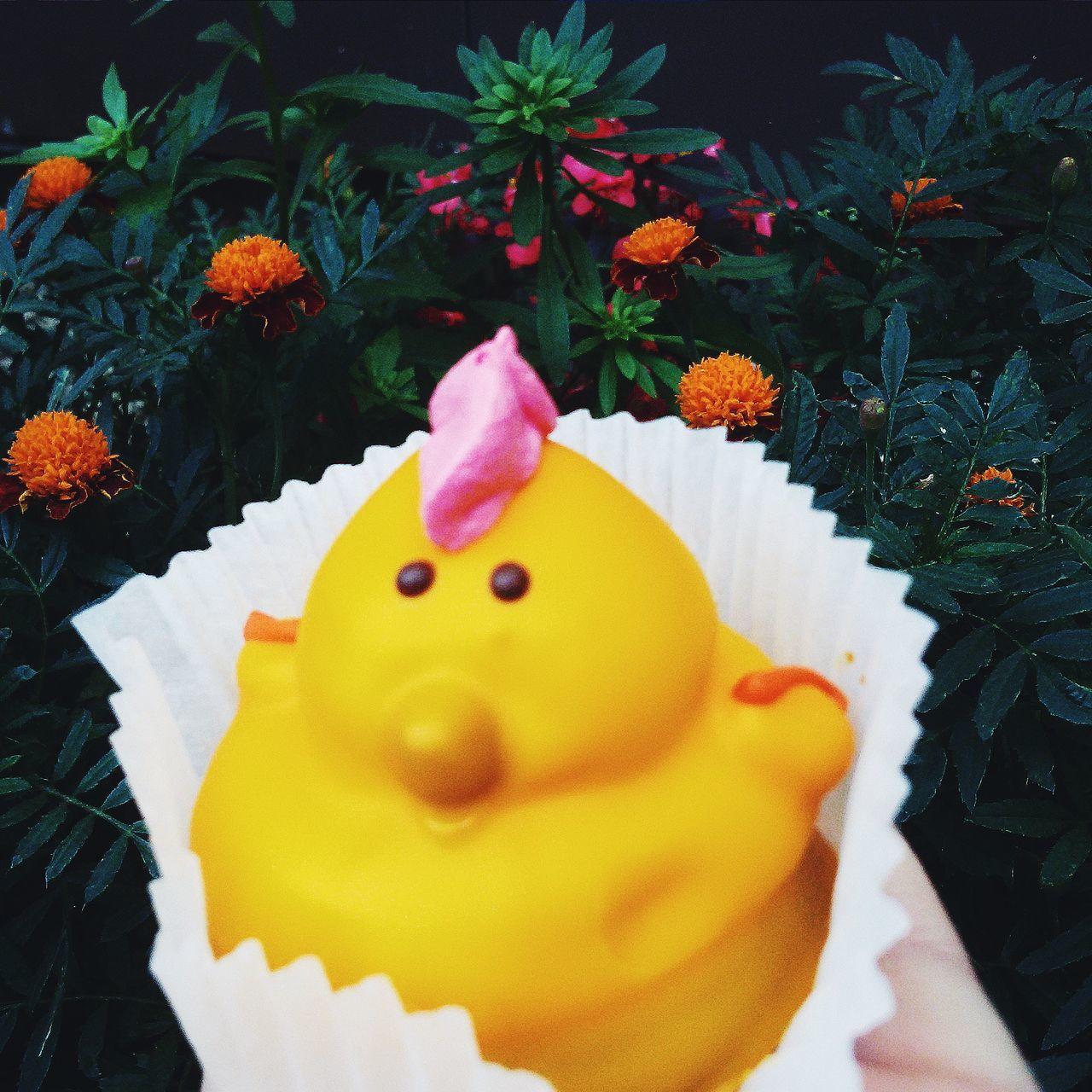пирожное вкусности цветы цыпленок Still Life Flower Ready-to-eat No People Cake