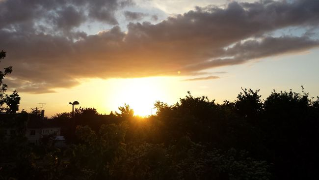 beau couché de soleil. Sunny Day Taking Photos Sunset