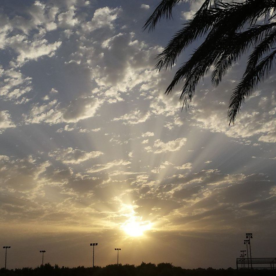 Never saw such a wonderful sky ma sha Allah 😍😍😍 100happydays Day21 Nofilter Sky Ciel Beautiful Nature Sunset Rimaya Tangier Tanger  Morocco Throwback Palmboom Sun SoubhanAllah