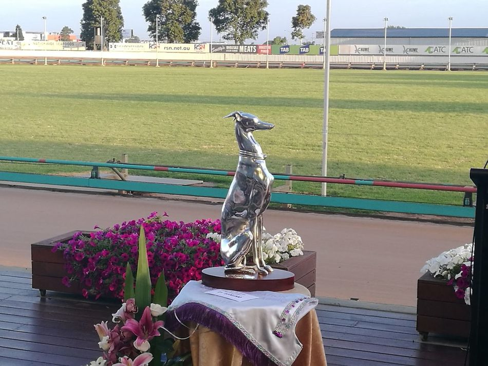 The Trophy awarded to the Winner of the Group 1 Silver Chief Final Greyhound Race over 525 Metres.