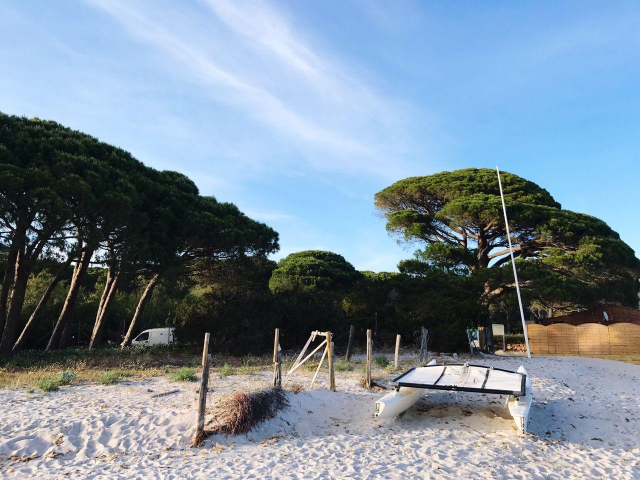 Palomba This Porto-Vecchio Corse Corsica