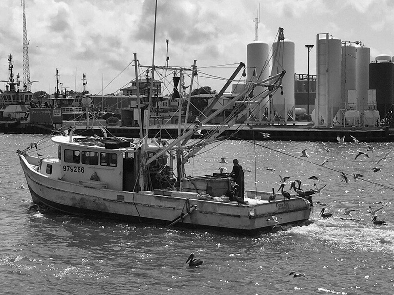 Shrimpers Boat Galveston Texas Work Boat Shrimping Blackandwhite