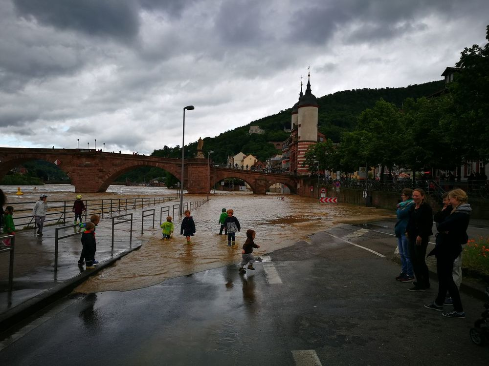 Hochwasser Heidelberg Neckar Elvira  Flut Wasser River Fluss Germany Deutschland