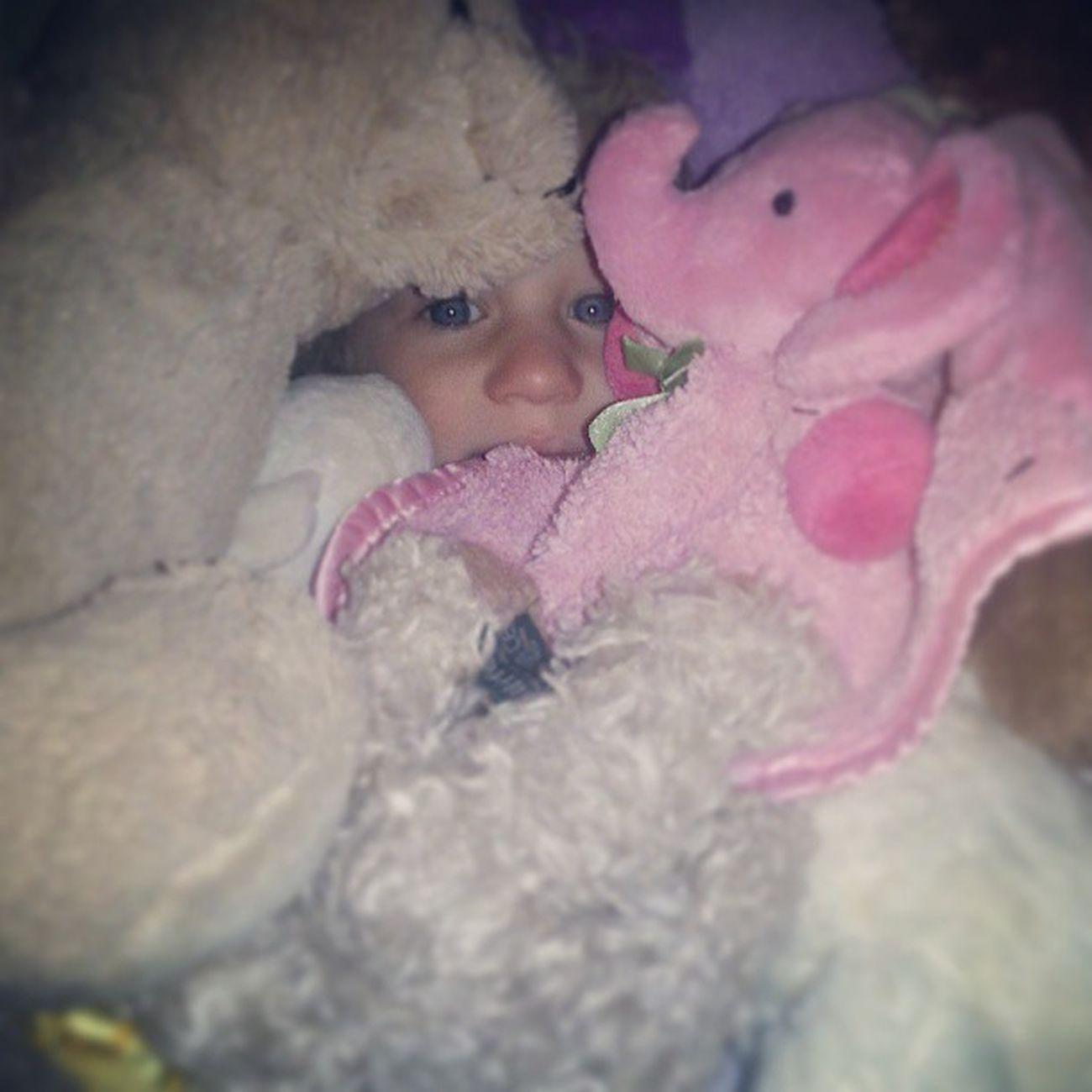 Hiding Eye Baby Eyes Babygirl Stuffed Animals Blue Eyes