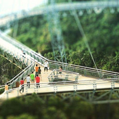 Mount Mat Cincang | Langkawi Tiltshift Langkawi Malaysia