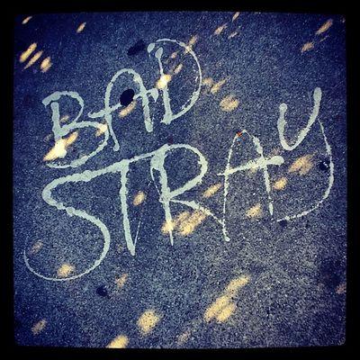 Bad Stray HighlandPark Graffiti