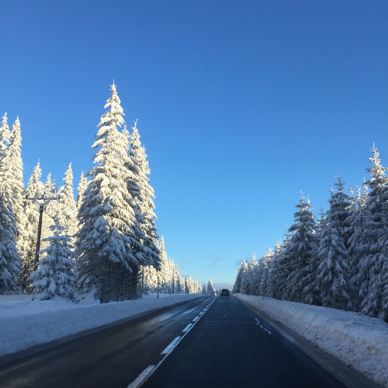 Beauty In Nature Blue Bluesky Clear Sky Cold Temperature Day Freezing Holiday Horizon Over Water Landscape Nature No People Ontheroad Outdoors Road Roadtrip Scenics Snow The Way Forward Transportation Tree Trees Winter Winter Winterwonderland