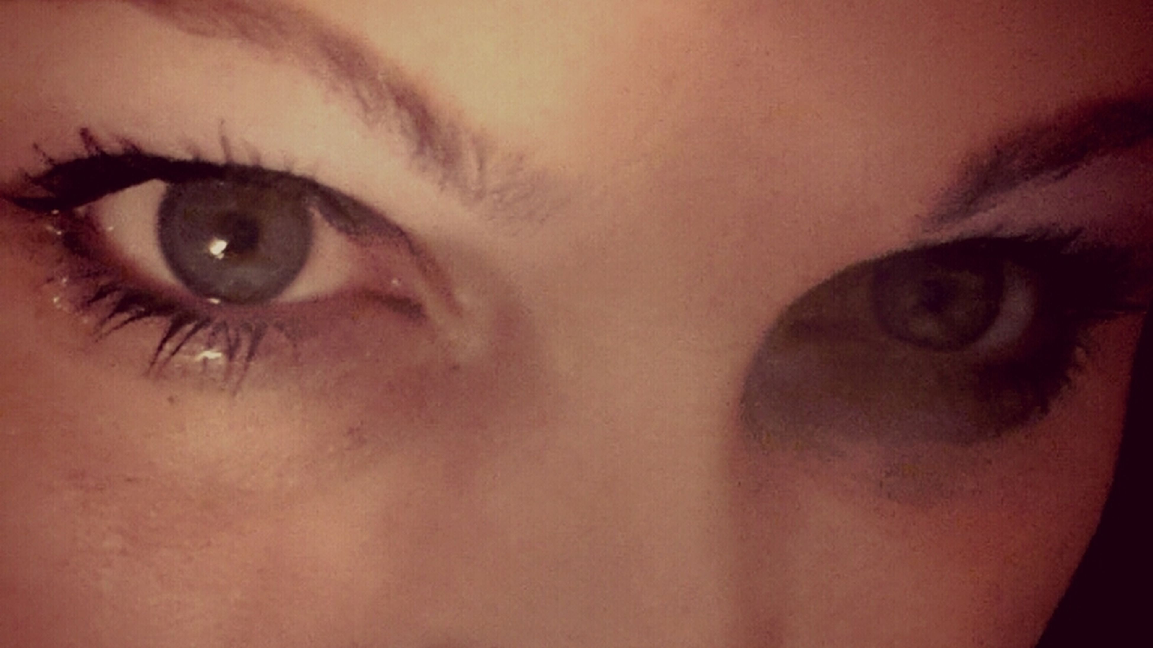 human eye, close-up, indoors, eyelash, looking at camera, portrait, human face, eyesight, part of, human skin, extreme close-up, lifestyles, sensory perception, headshot, young adult, person, extreme close up