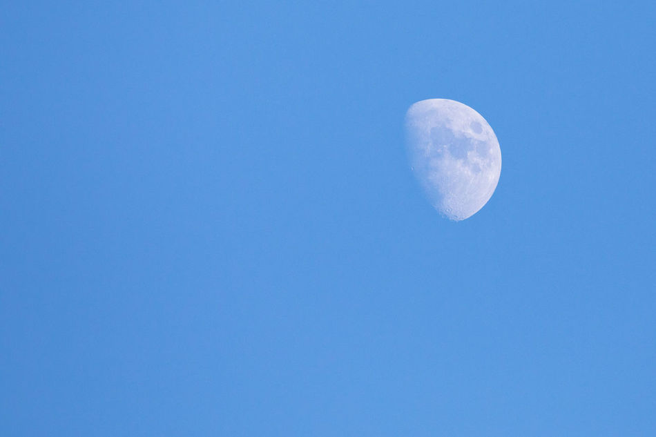 Waxing moon against clear blue sky Astronomy Backgrounds Beauty In Nature Blue Blue Background Clear Sky Copy Space Day Half Moon Heaven Low Angle View Moon Moon Surface Nature No People Outdoors Planetary Moon Simplicity Single Object Sky Waxing Moon
