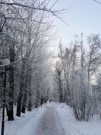 Winter Happy Snow Walking January