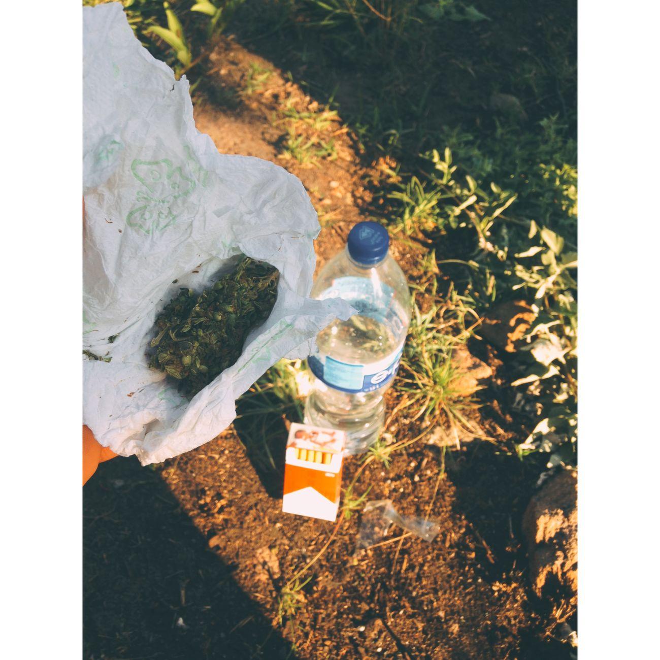 Tarde  Sun ☀ EyesRed Smoking Weed Smoke Weed Weed Life First Eyeem Photo Weed Marihuana Marihuana pa fumar Mariguana