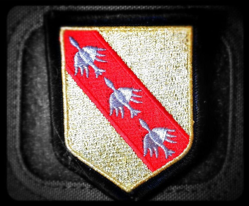 Lorraine Coat Of Arms Austrasie