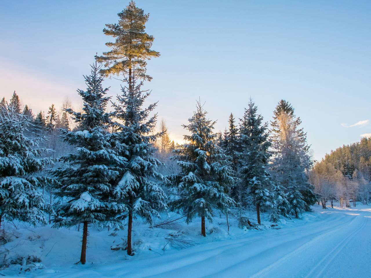 Snow-Covered Road In Winter Landscape
