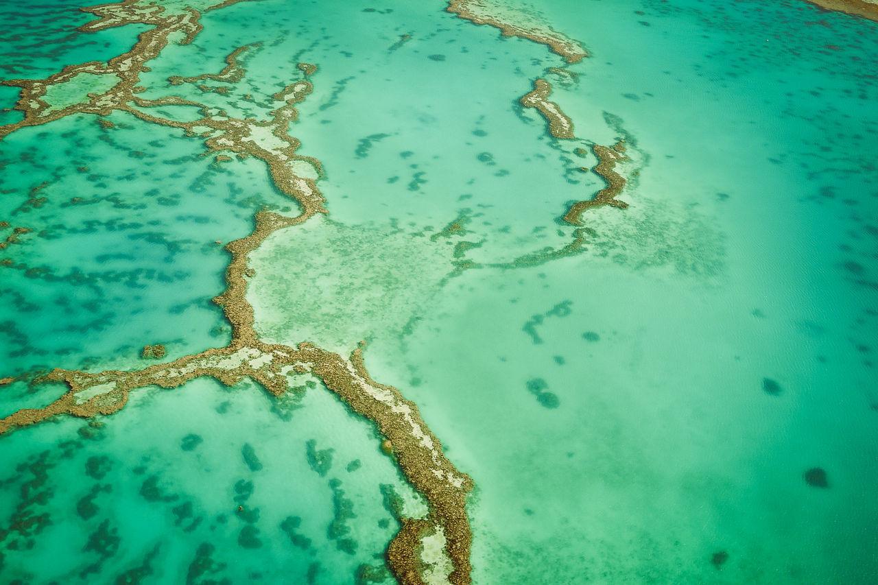 Great Barrier Reef Aerial Atoll Australia Australien Down Under Great Barrier Reef Korallen Korallenriff Landscape Luftaufnahme Meer Muster Nature Ocean Oceania Ozean Ozeanien Pacific Ocean Queensland Reef artiseverywhere Sea Life Seascape Unterwasserwelt Water