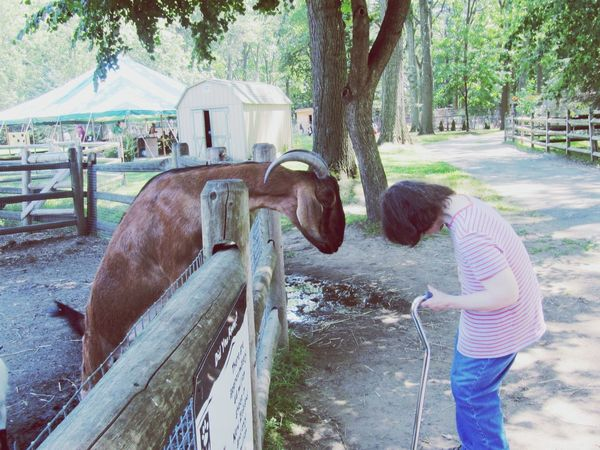 Untold Stories Disabled Woman Portrait Of A Woman Goat Zoo EyeEm Best Shots The Human Condition