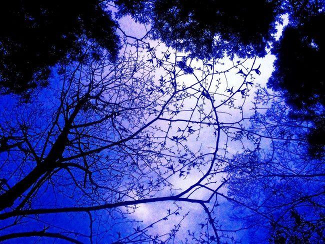 Sky Blue http://youtu.be/DeLBkoW1-Ow
