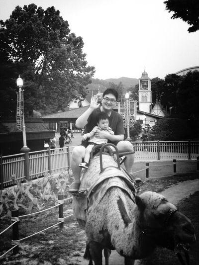 아들과 낙타 타기 :)