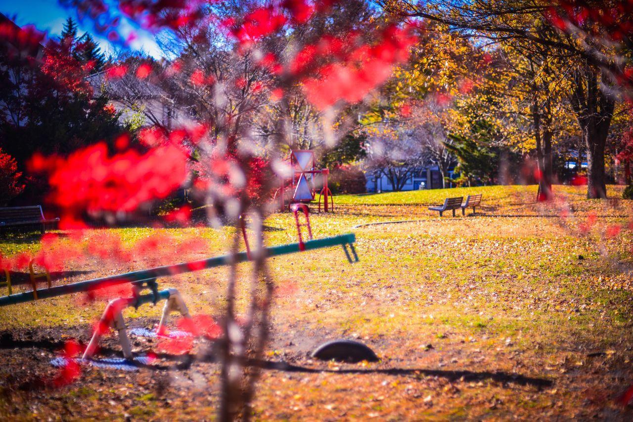 scenery of japan eyeem