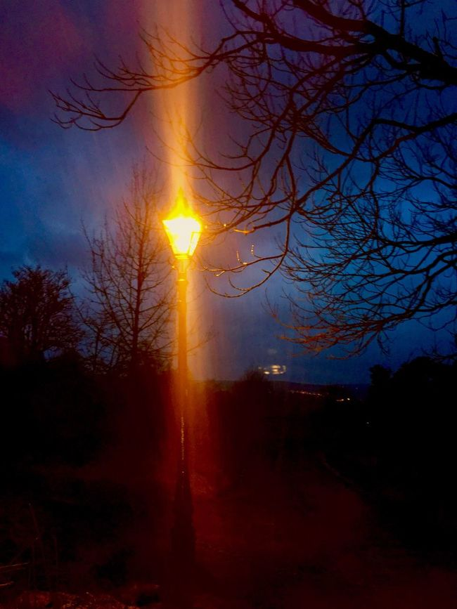 Street lamp on Ilkley Moor, Yorkshire Silhouette Tree Nature Sky Outdoors Sunset Dark No People Beauty In Nature Tranquility Night Bare Tree Ilkley Tarn Ilkley Moor Yorkshire Street Lamp