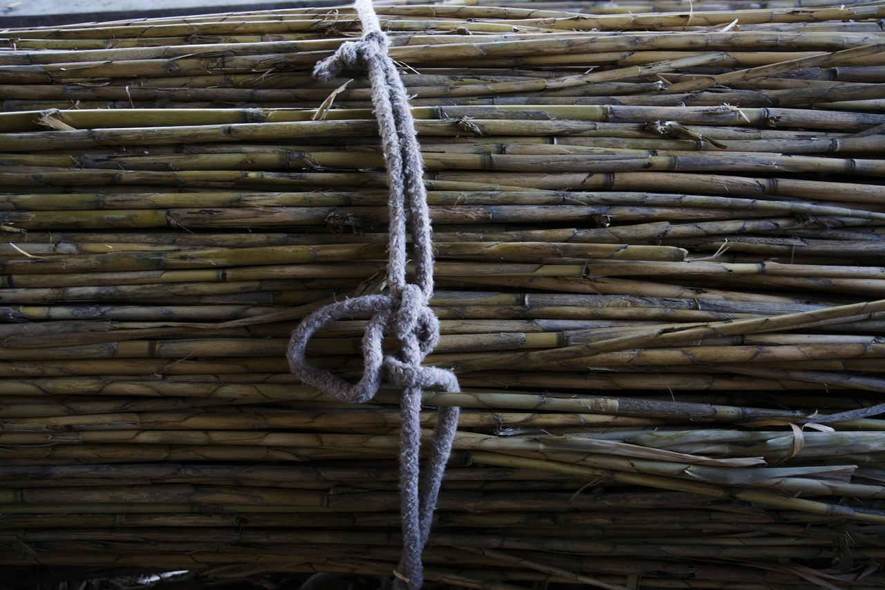rope, strength, tied up, connection, no people, outdoors, day, tied knot, full frame, close-up, braided, thick