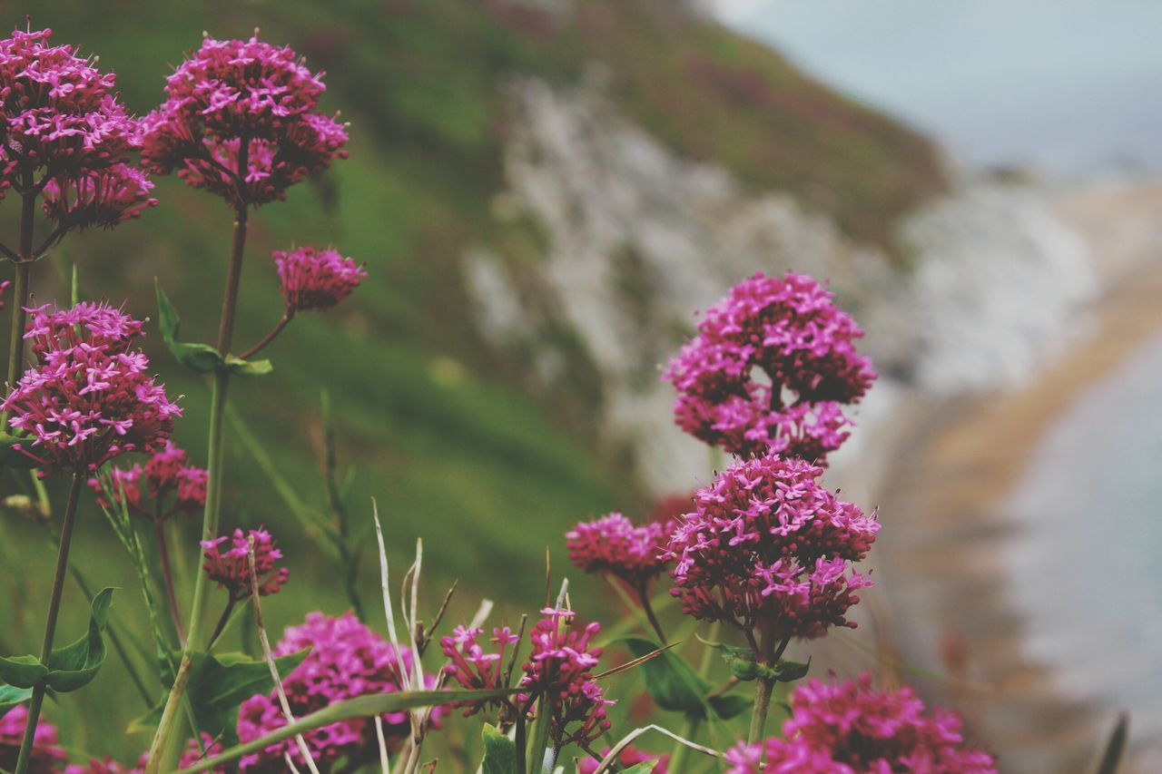 No People England2016 England Uk England <3 England 🇬🇧 Großbritannien See Klippen Landscape Nature Hello World ❤ EyeEmBestPics EyeEm Best Shots - Nature HelloEyeEm EyeEmNewHere The Week Of Eyeem