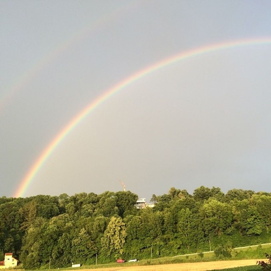 After the rain... Rainbow Nature