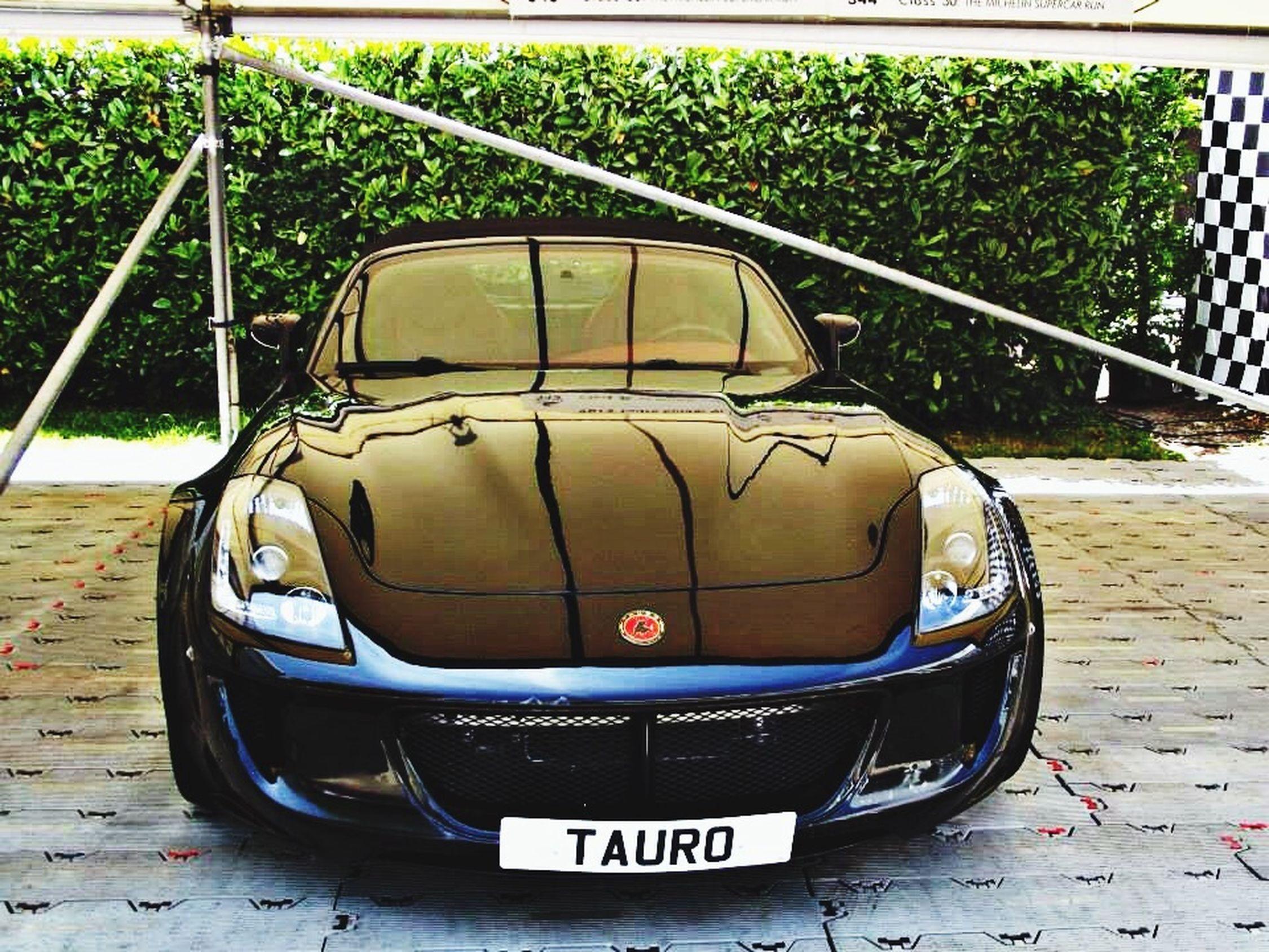Tauro Auto Spot Goodwood Festival Of Speed 2013 Car Black