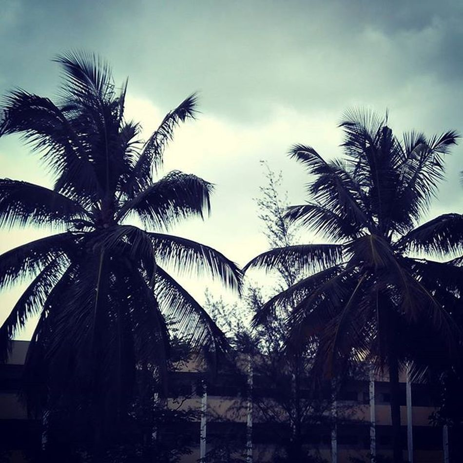 Instaclouds Bengaluru Throughmyeyes ThroughMyLens Instadaily Instagood Instaevening