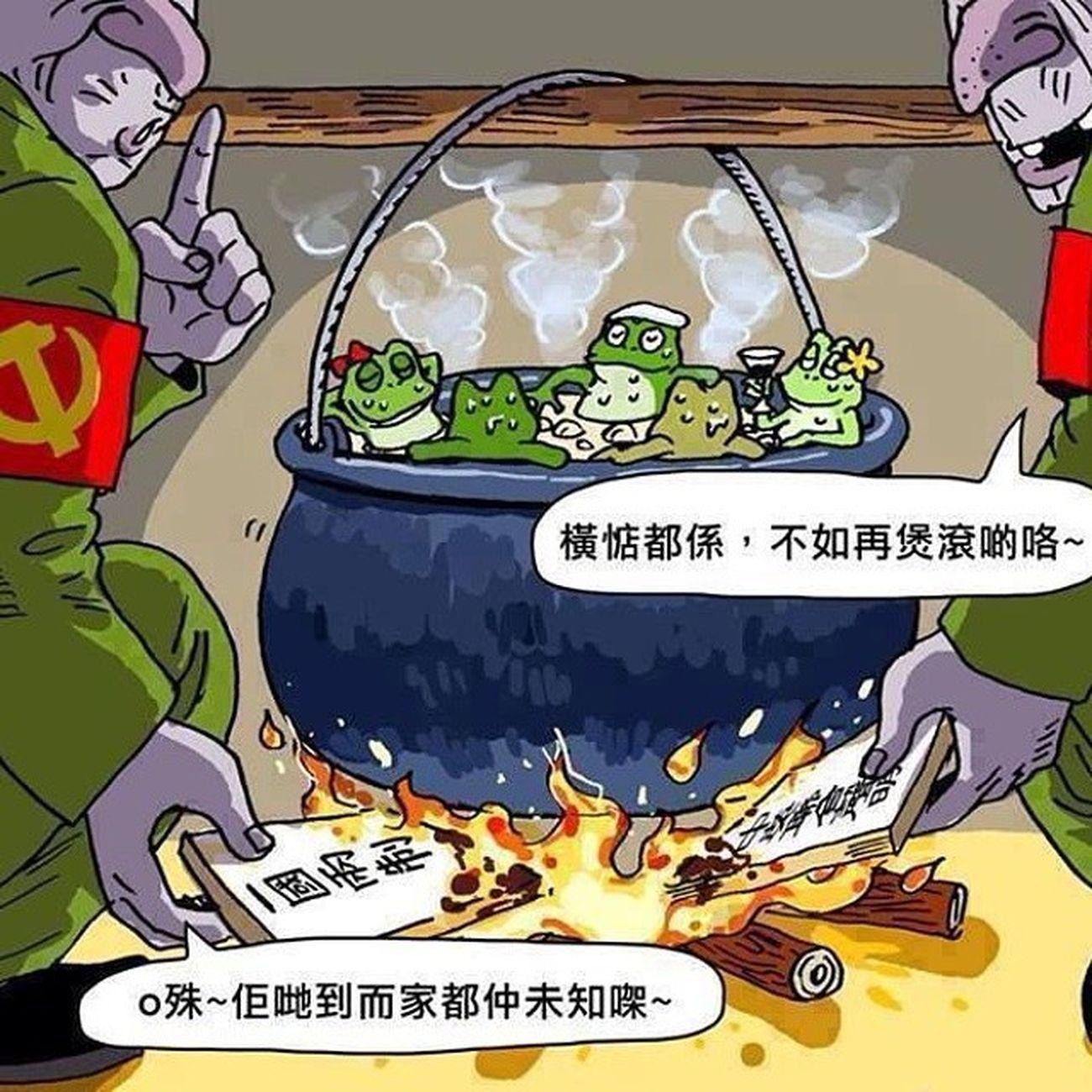如果此帖為在下instagram最後一帖的話,請為我默哀! Hkig 2014 Cusonlo 溫水煮蛙 烈士 安心上路 白皮書 自己的香港自己救 一國兩制