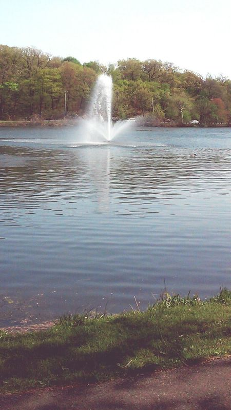 Pond water Water Fountain Fellsreservation Landscape_Collection Water_collection