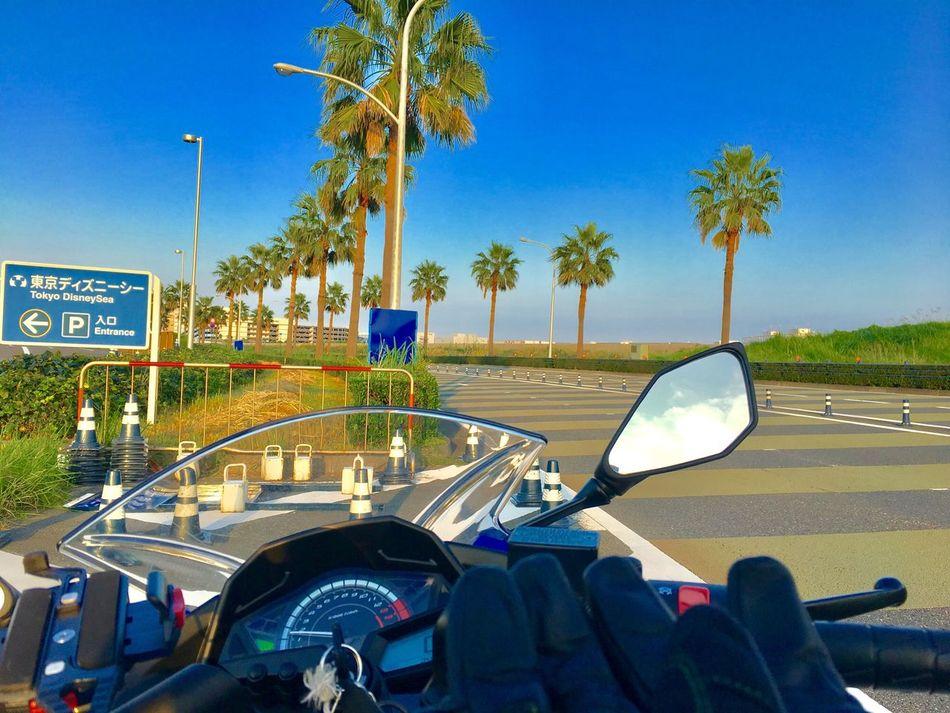 舞浜ツーリング Touring Bike Maihama Disney 舞浜 バイク ツーリング ディズニー 日曜日 休日 Sunday First Eyeem Photo