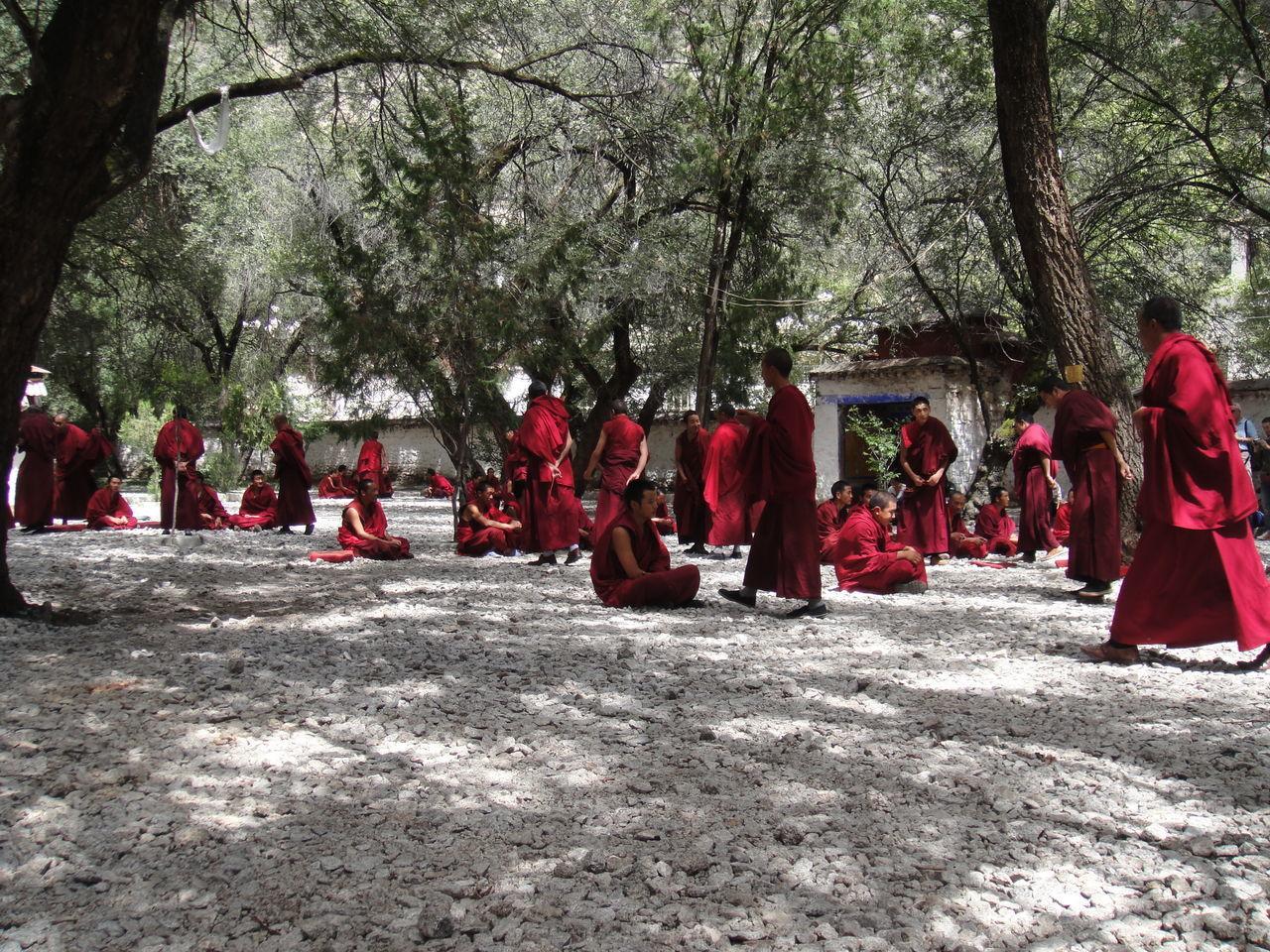 Buddha Temple Buddhist Monks Buddist Lhasa Tibet Tibetan Buddhism