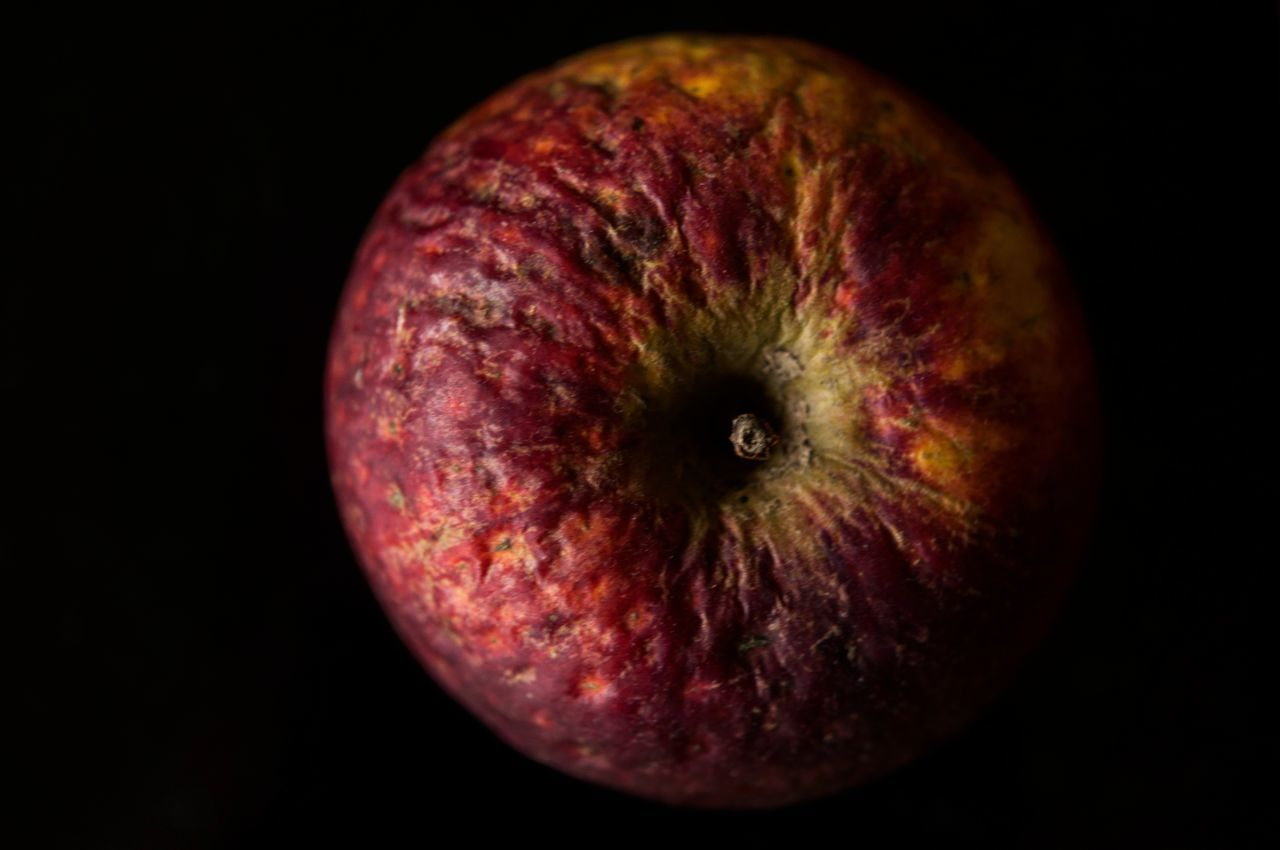 Old apple Fruit Black Background Apple - Fruit Red Healthy Eating Food No People Close-up Macro Indoors  Indoors  Taking Photos Pic Of The Day January Fragility Beauty In Nature Wintertime Colorful Winter Beautiful