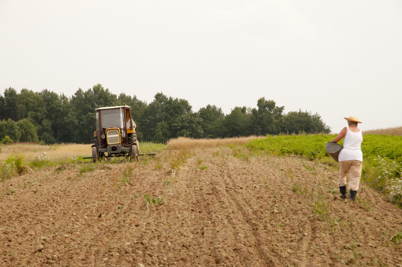 Farmers Planting Seeds by Hand Agriculture Farmer Tractor Farmers Plowed Field